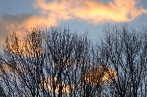 Sinking sunlit sky