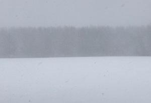 Snowy soccer color field